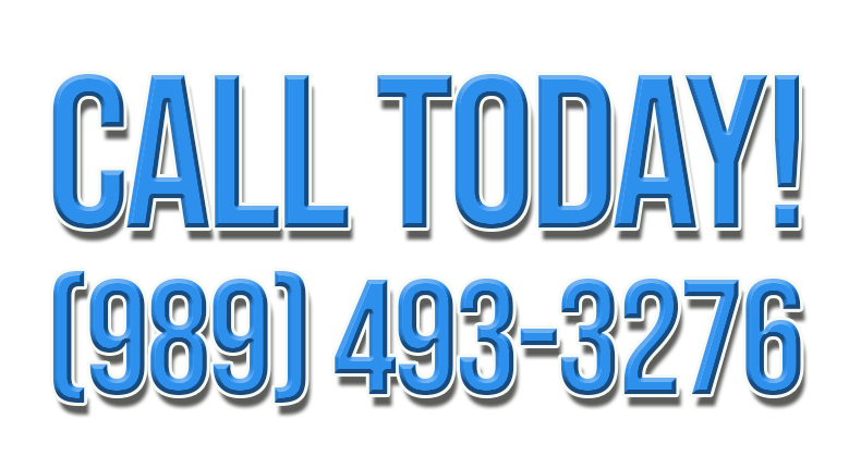 carpet cleaning services bay city