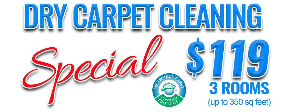 carpet cleaning services in Bay City MI